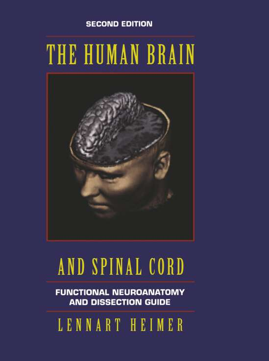 The Human Brain and Spinal Cord