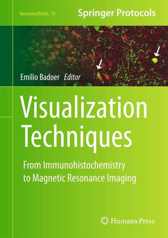 Visualization Techniques