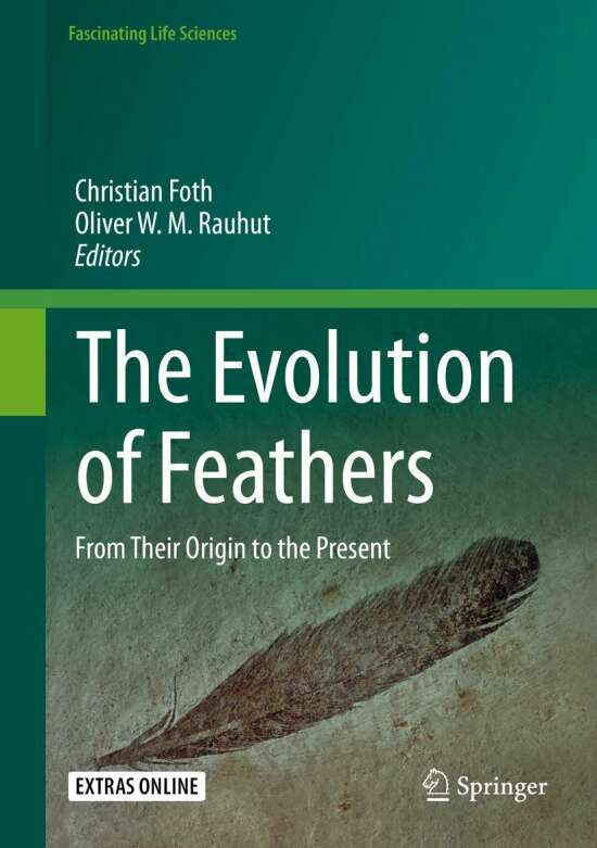The Evolution of Feathers