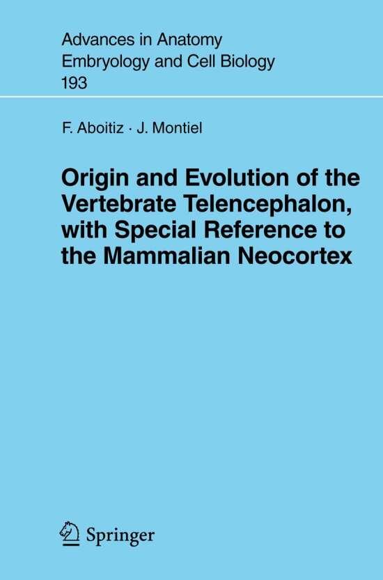 Origin and Evolution of the Vertebrate Telencephalon, with Special Reference to the Mammalian Neocortex