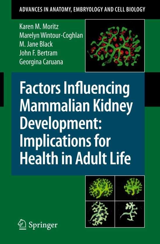 Factors Influencing Mammalian Kidney Development: Implications for Health in Adult Life