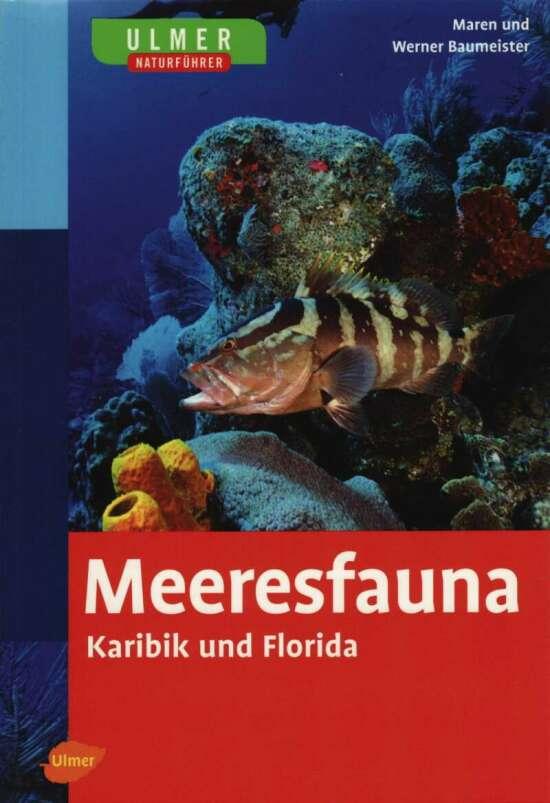 Ulmer Naturführer Meeresfauna Karibik und Florida