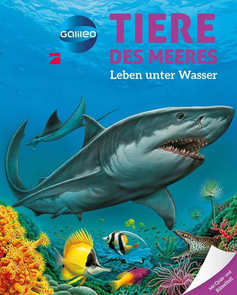 Galileo Wissen: Tiere des Meeres
