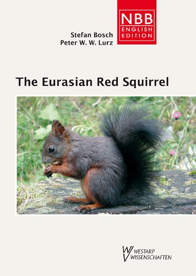 The Eurasian Red Squirrel