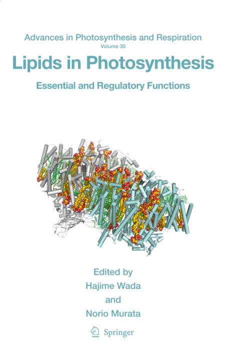 Lipids in Photosynthesis