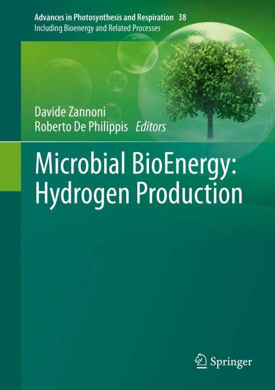 Microbial BioEnergy: Hydrogen Production
